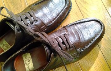 0708-201503_Shoe Lace 01