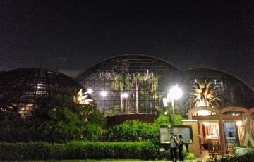 0980-201508_Yumenoshima Tropical Greenhouse Dome 01