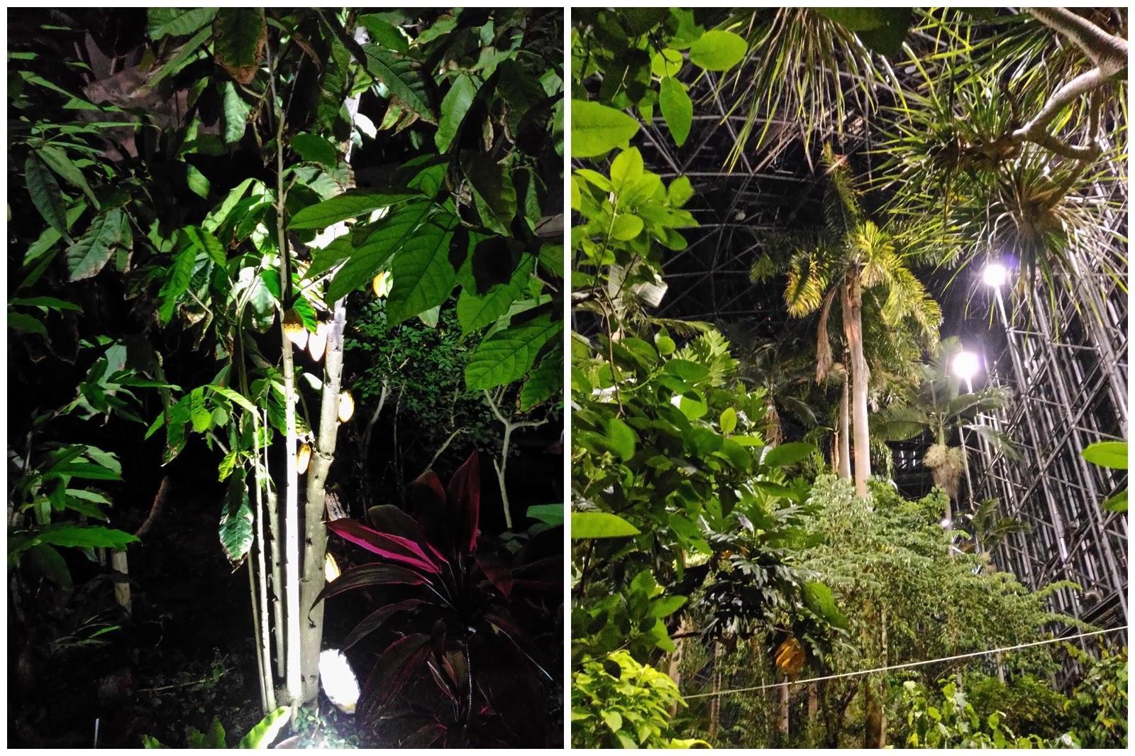 0980-201508_Yumenoshima Tropical Greenhouse Dome 07