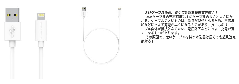 1103-201512_ZeroLemon Lightning Cable 02