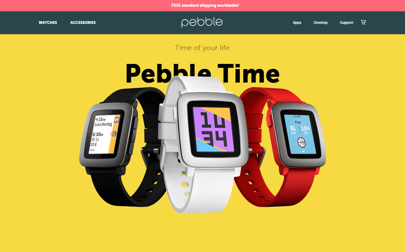 1138-201601_Pebble Time 01